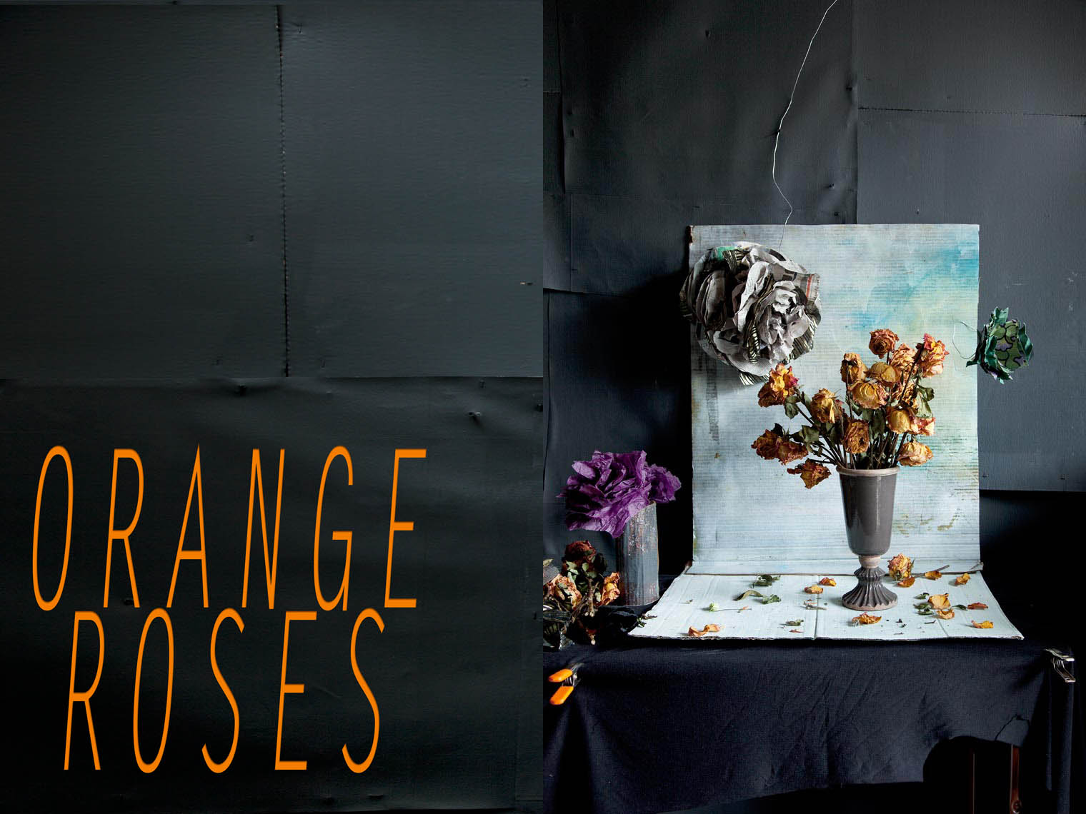 Orange Roses Opening Web Spread.jpg